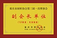 重庆市橱柜协会第三届第一次理事会副会长单位